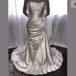 Pronovias W1 Tigris Wedding Dress -Unaltered-Sz: 6